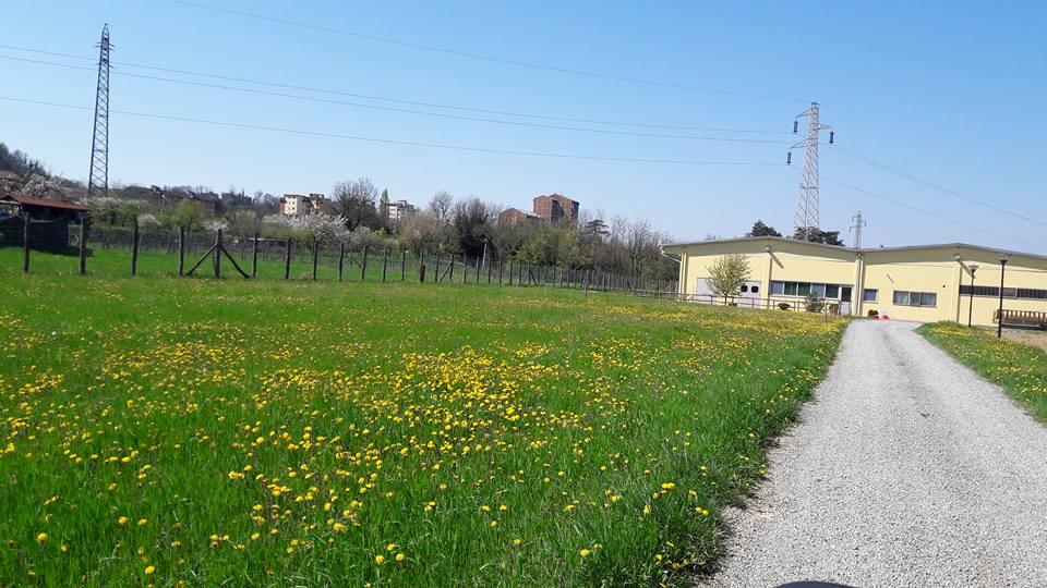 Azienda Agricola Ravera Arquata Scrivia Alessandria
